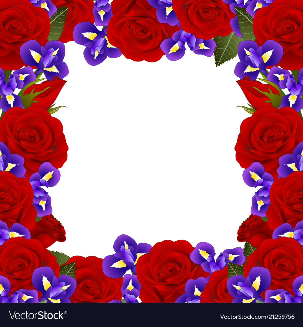 Red Rose And Iris Flower Border Royalty Free Vector Image