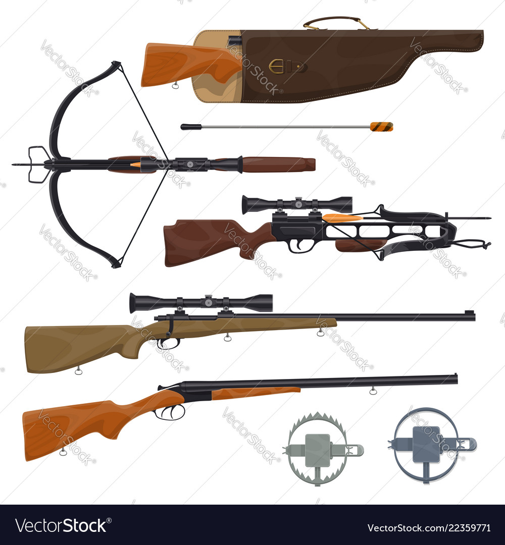 Hunting equipment and gun