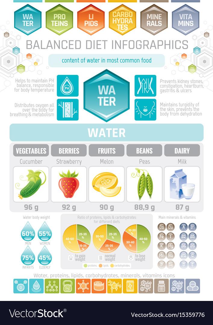 1560e034991 Aqua beverage diet infographic diagram poster Vector Image