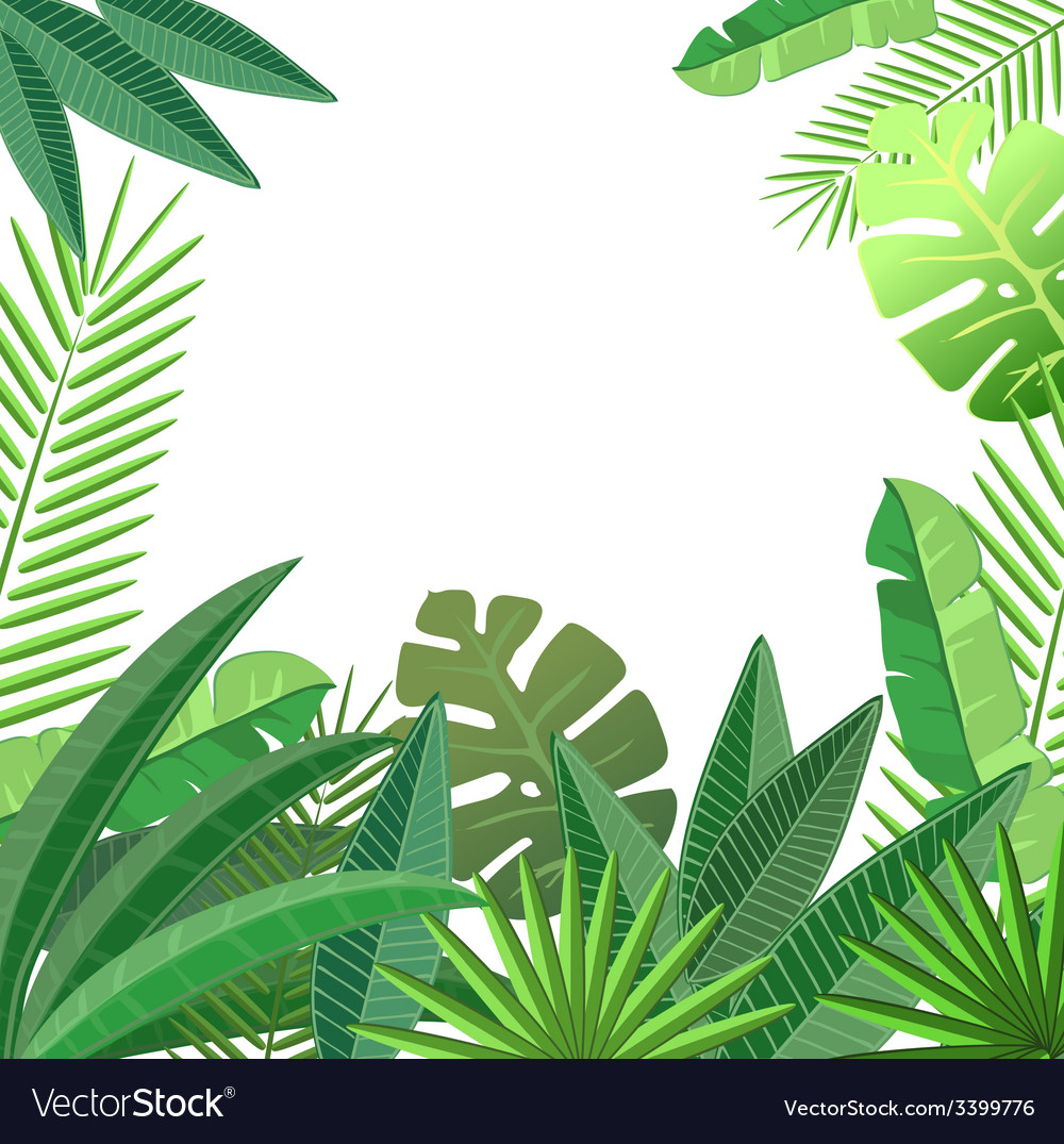 Tropical Leaves Floral Design Royalty Free Vector Image Shop affordable wall art to hang in dorms, bedrooms, offices, or anywhere blank walls aren't welcome. vectorstock