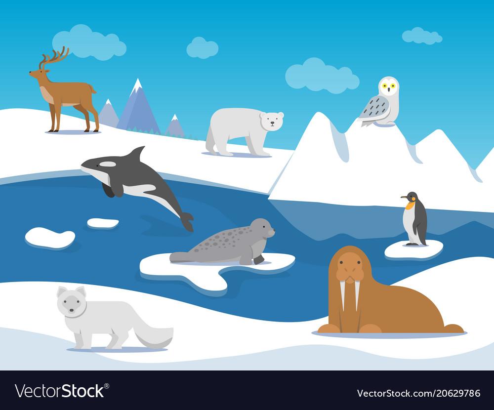 Arctic landscape with different polar animals