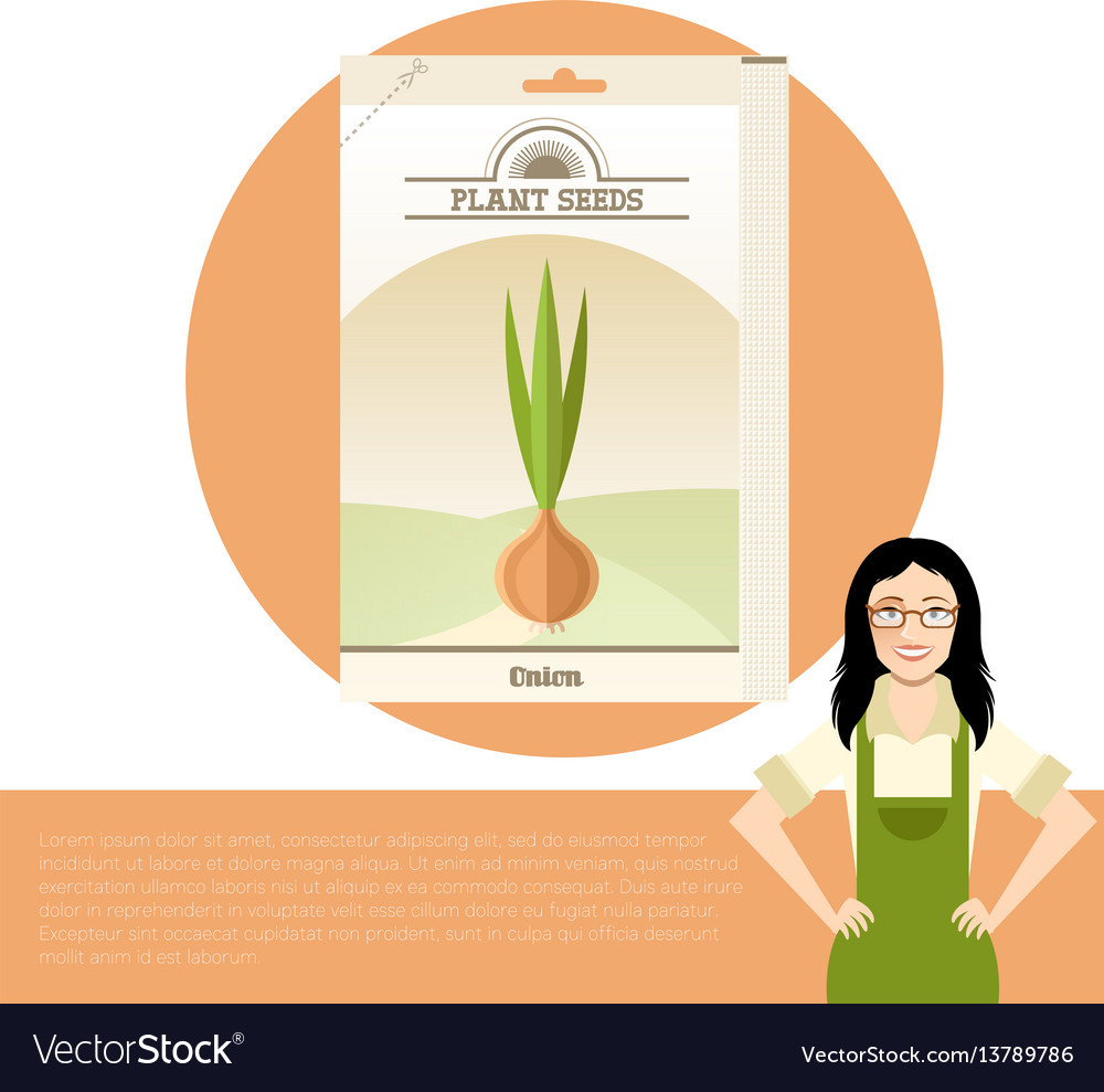 Pack of onion seeds icon vector image