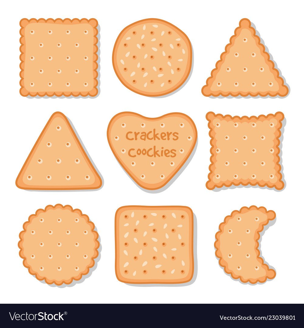 biscuit cookie snacks cookies biscuits royalty free vector vectorstock