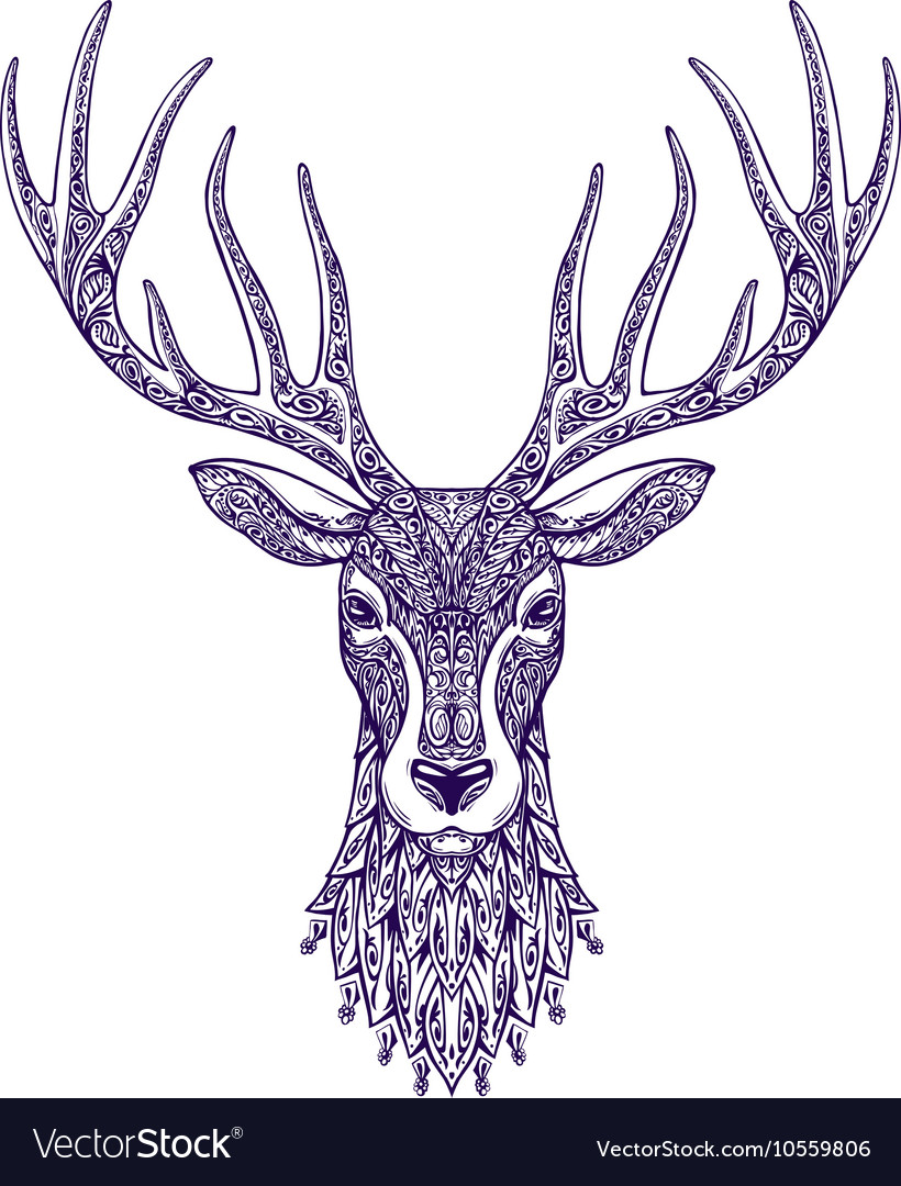 Deer head isolated on white background Hand drawn vector image