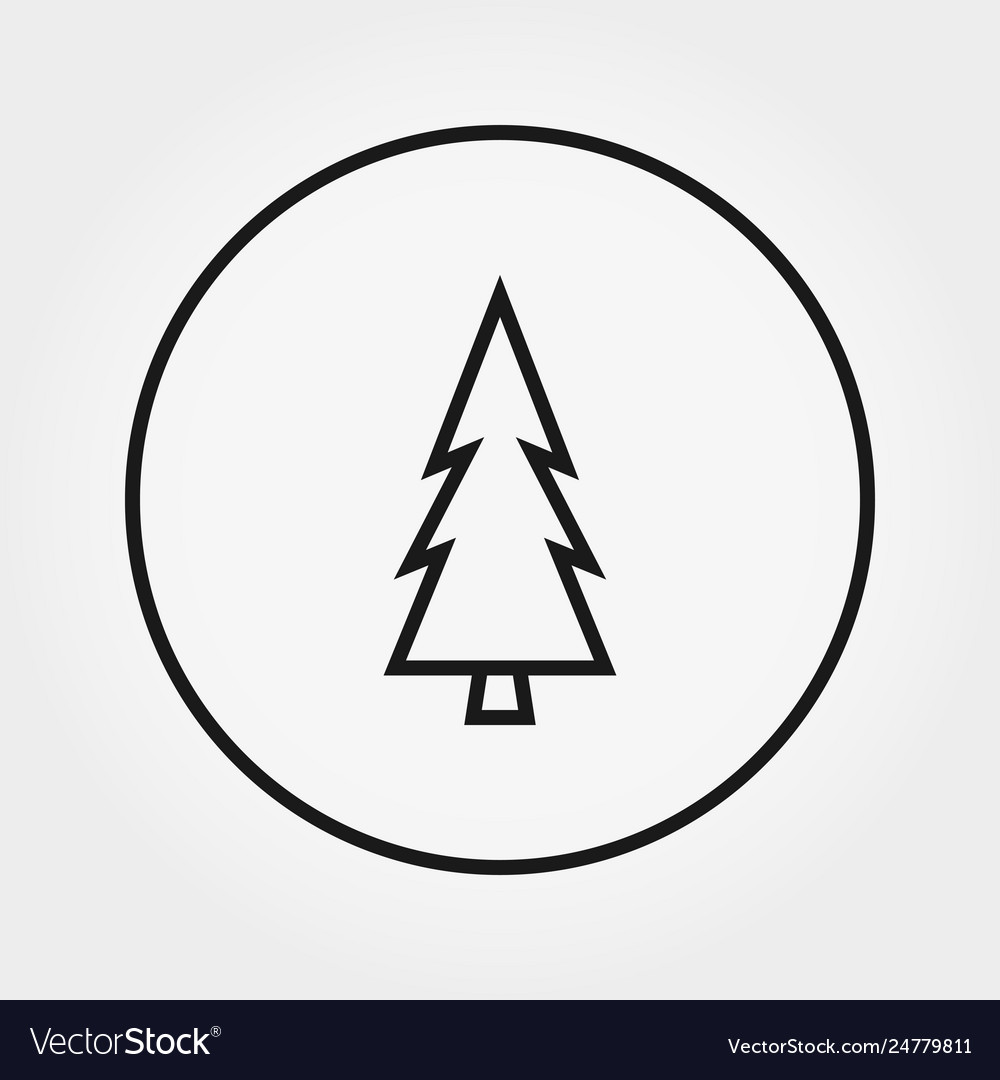 Coniferous forest pine trees forest outline icon