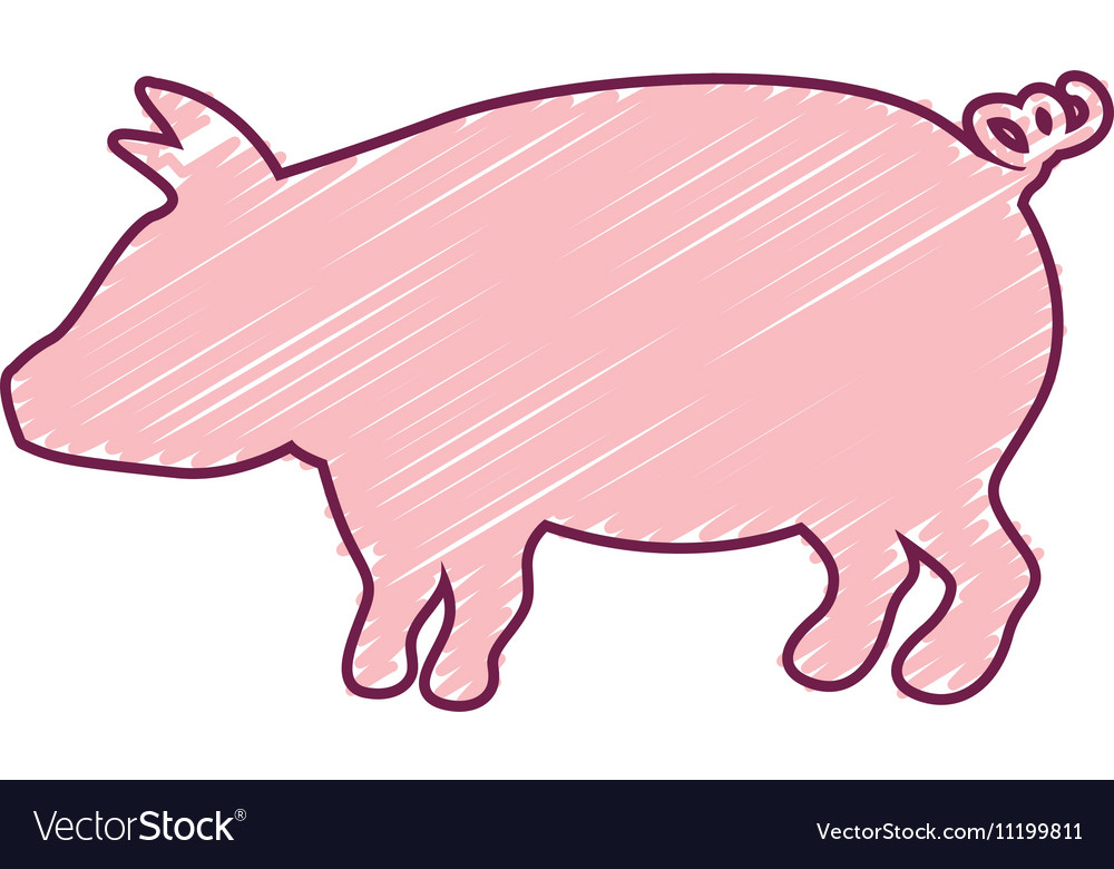 Silhouette pig with color strokes vector image