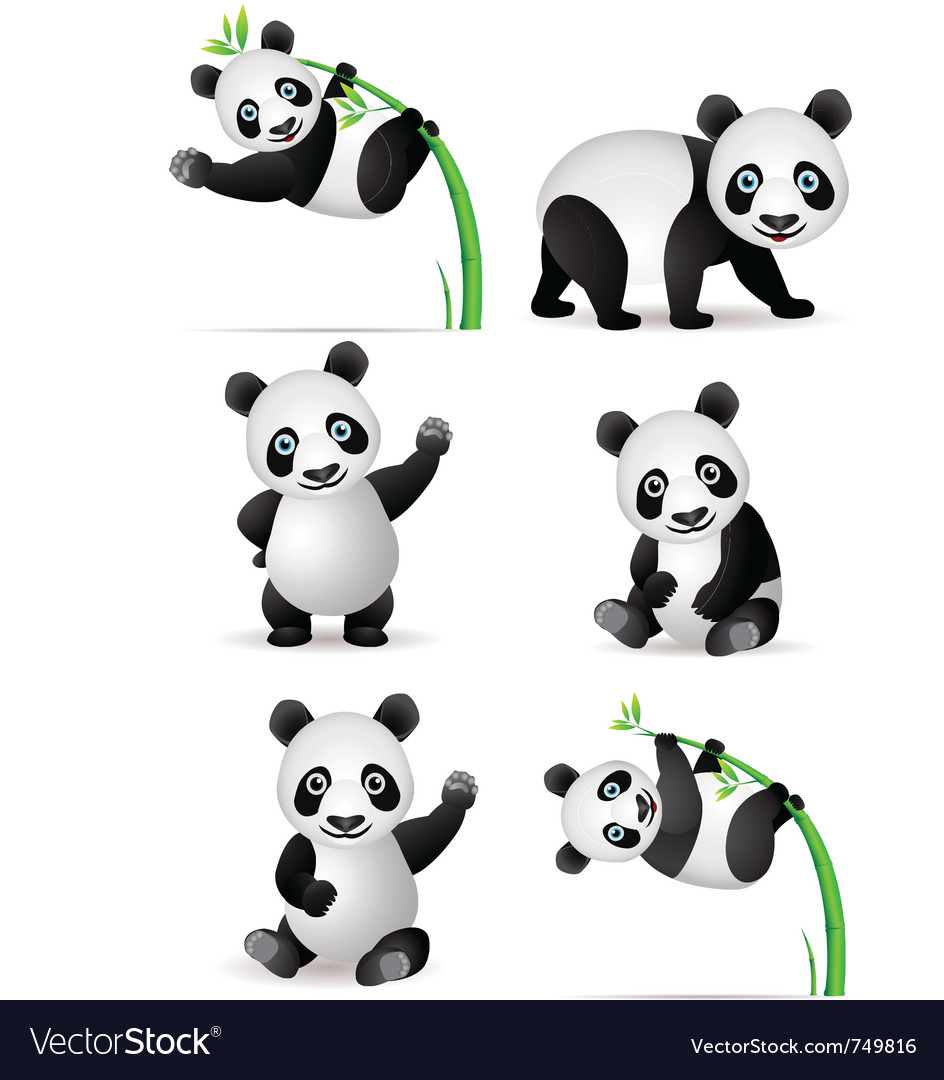 Panda cartoon collection vector