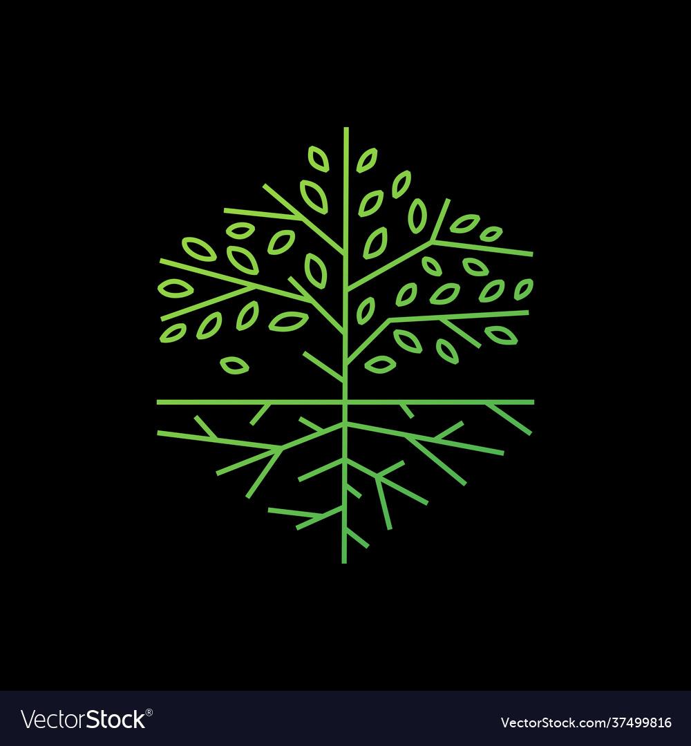 Tree root hexagonal outline logo icon