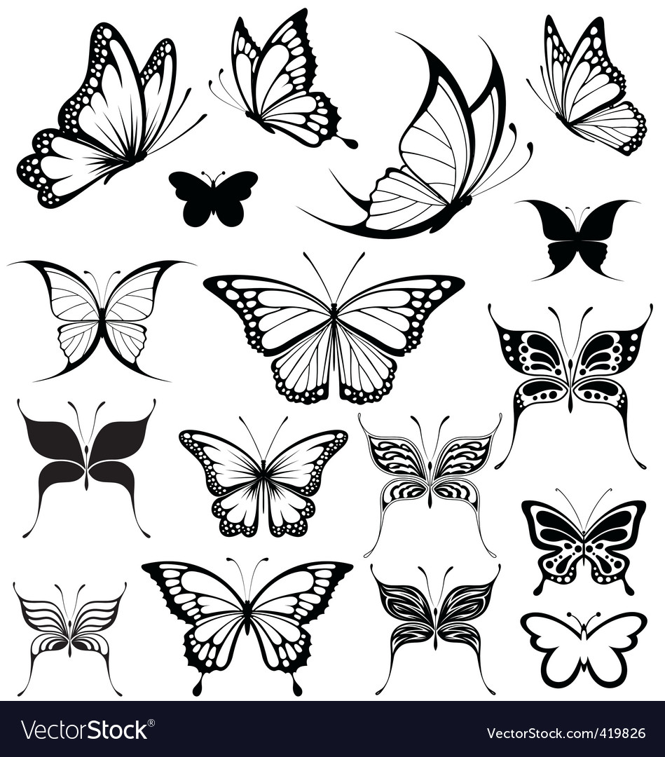 butterflies royalty free vector image vectorstock rh vectorstock com vector butterfly images free vector butterfly free