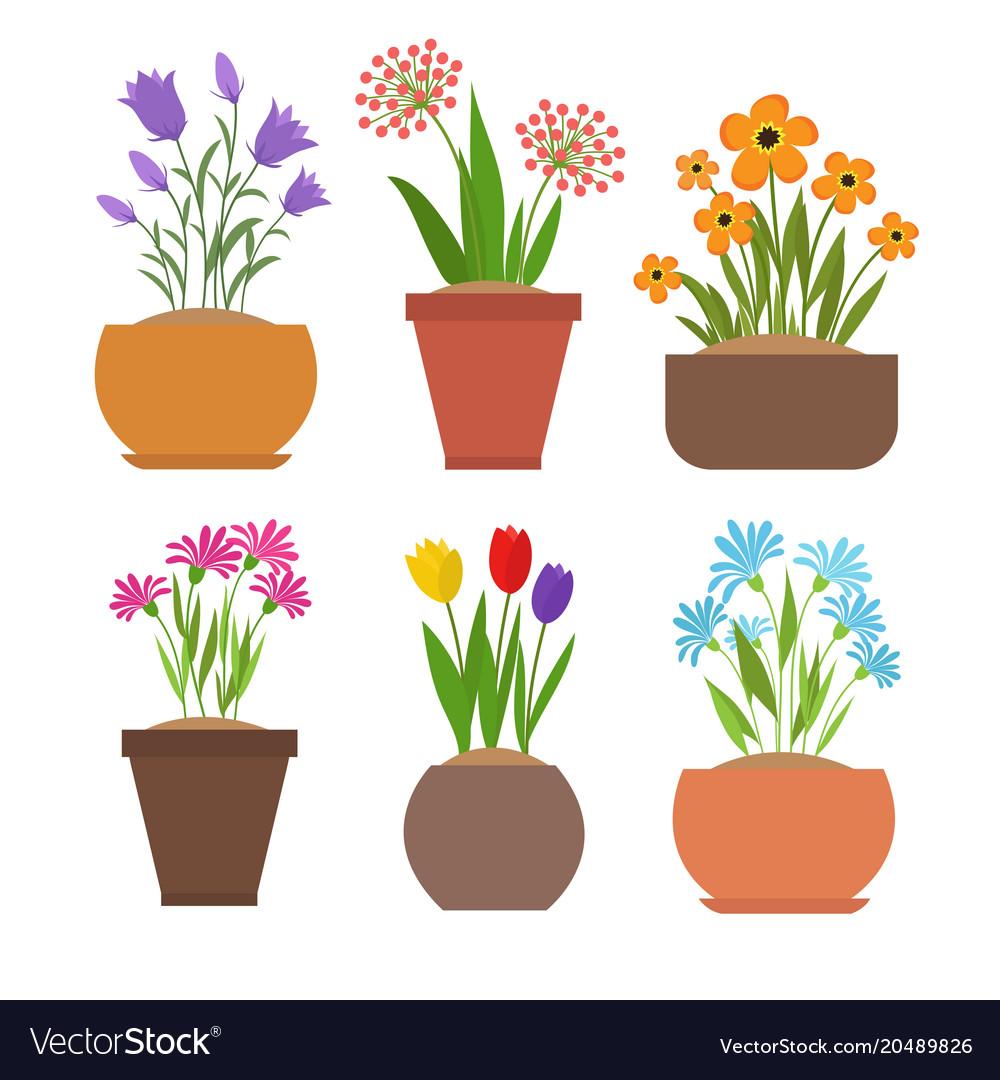 Garden Spring Flowers In Flower Pots Set Vector Image