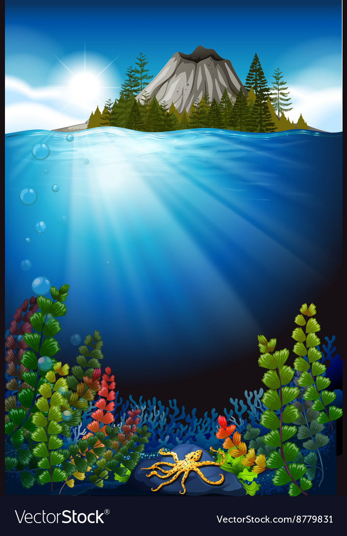 Scene with plants under the sea