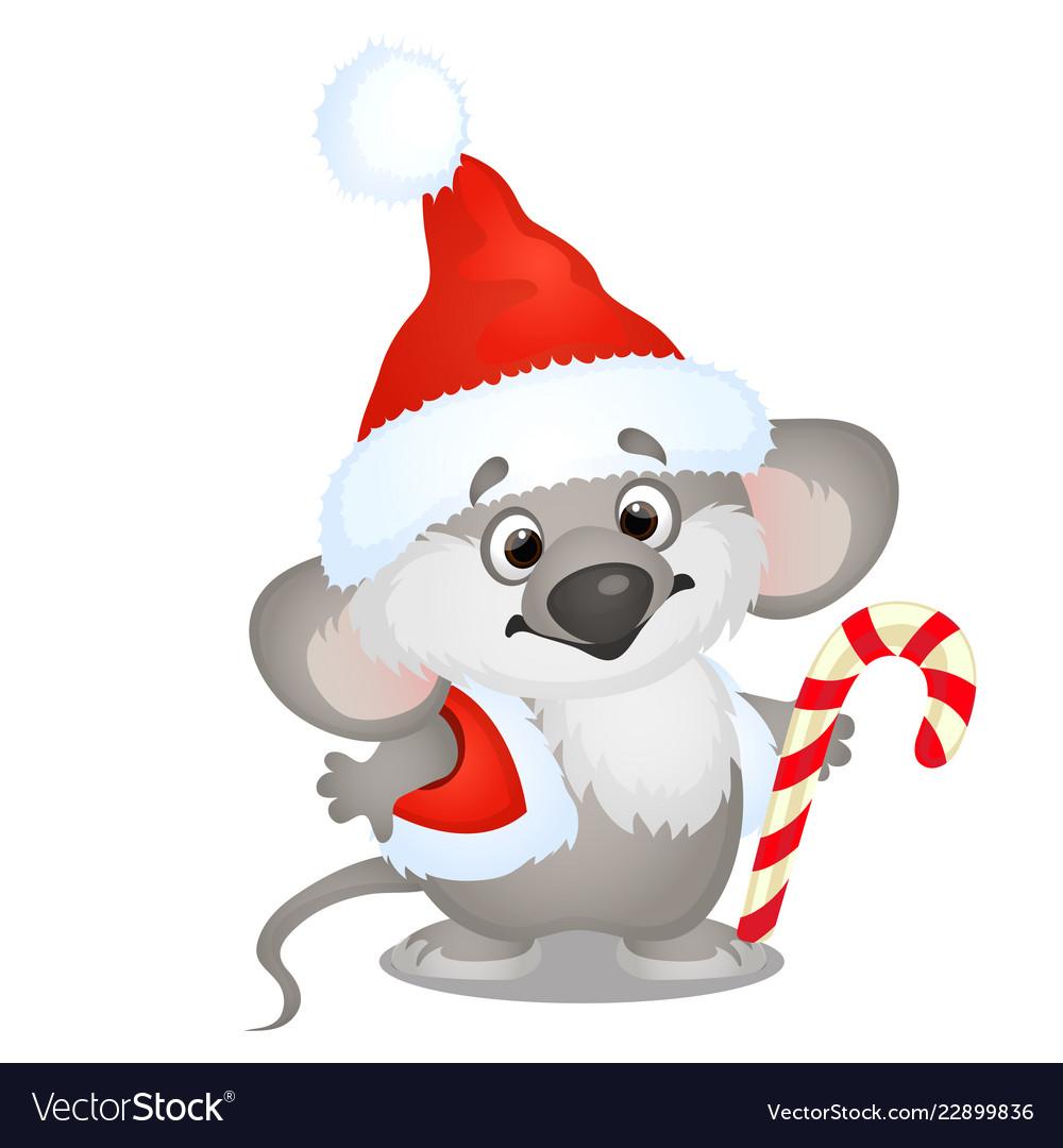 Cute koala bear in hat santa claus with sweet
