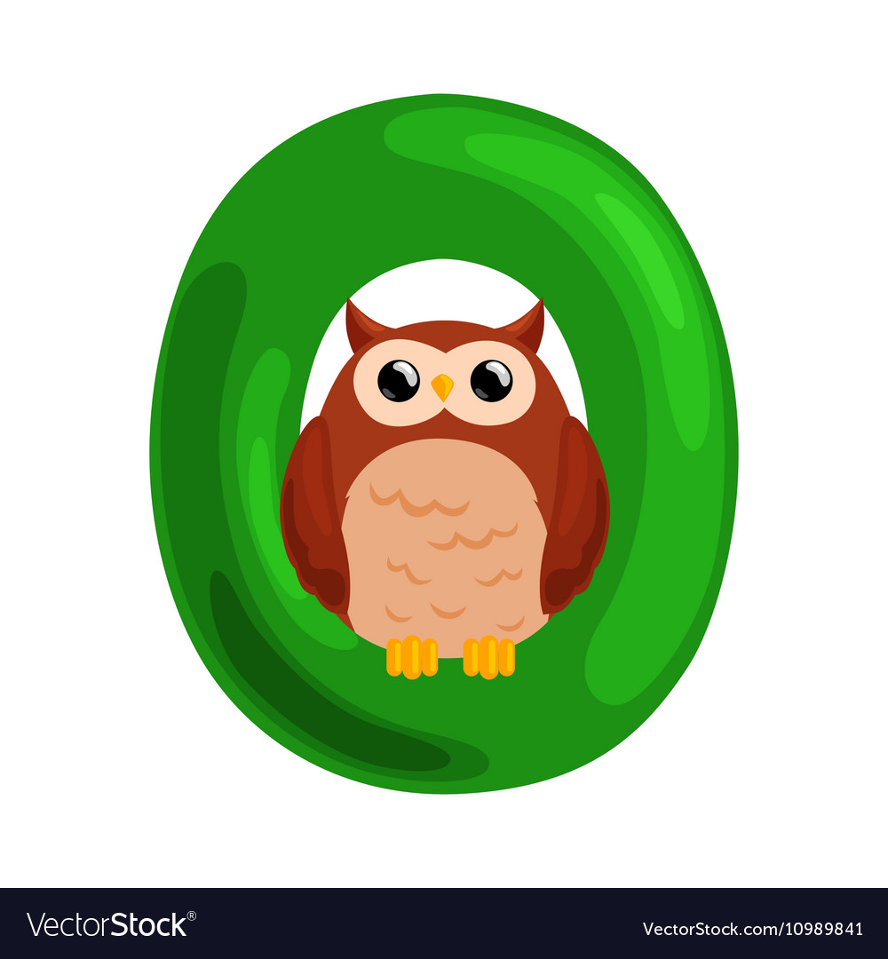 Letter O with animal owl for kids abc education in