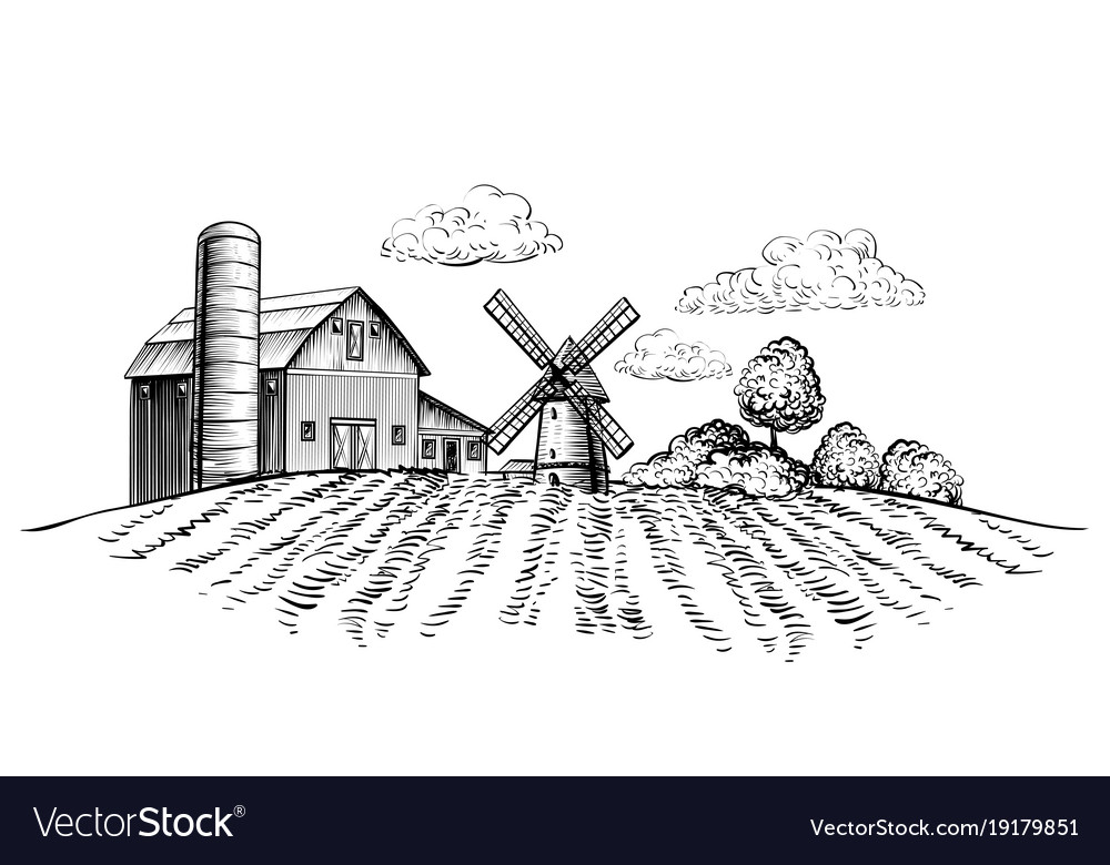 Farm Barn And Windmill On Agricultural Field Vector Image