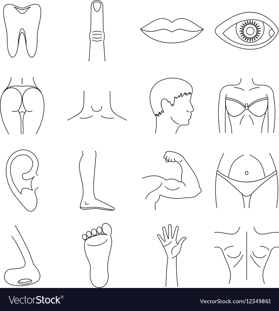 Body parts icons set outline style