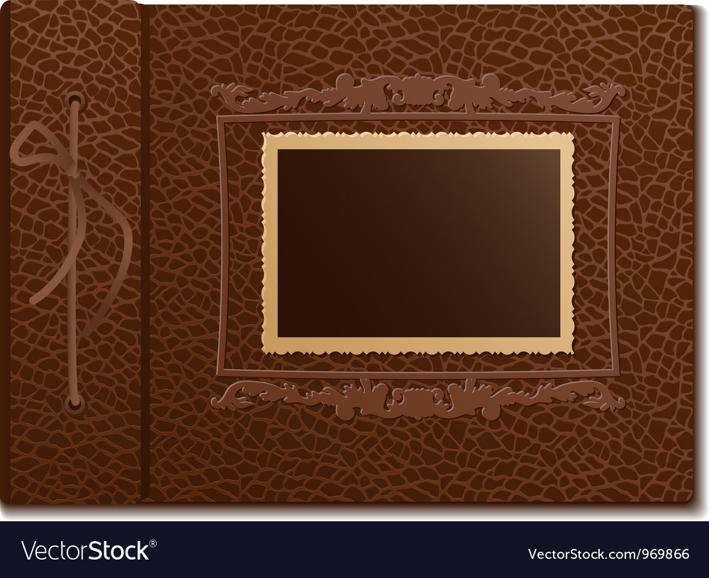 Skin cover a photo album vector image