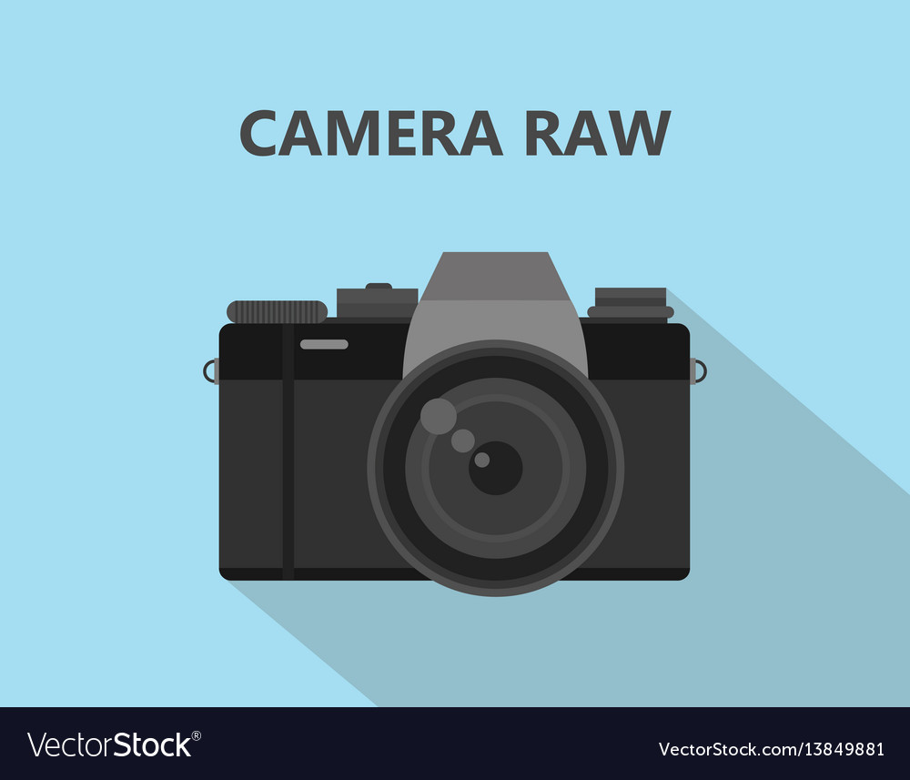 Camera raw format file with camera