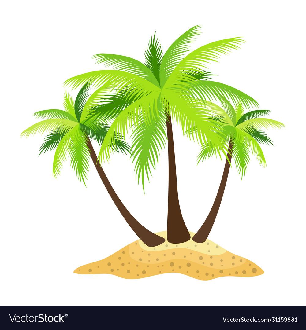 Island palm trees isolated on white background