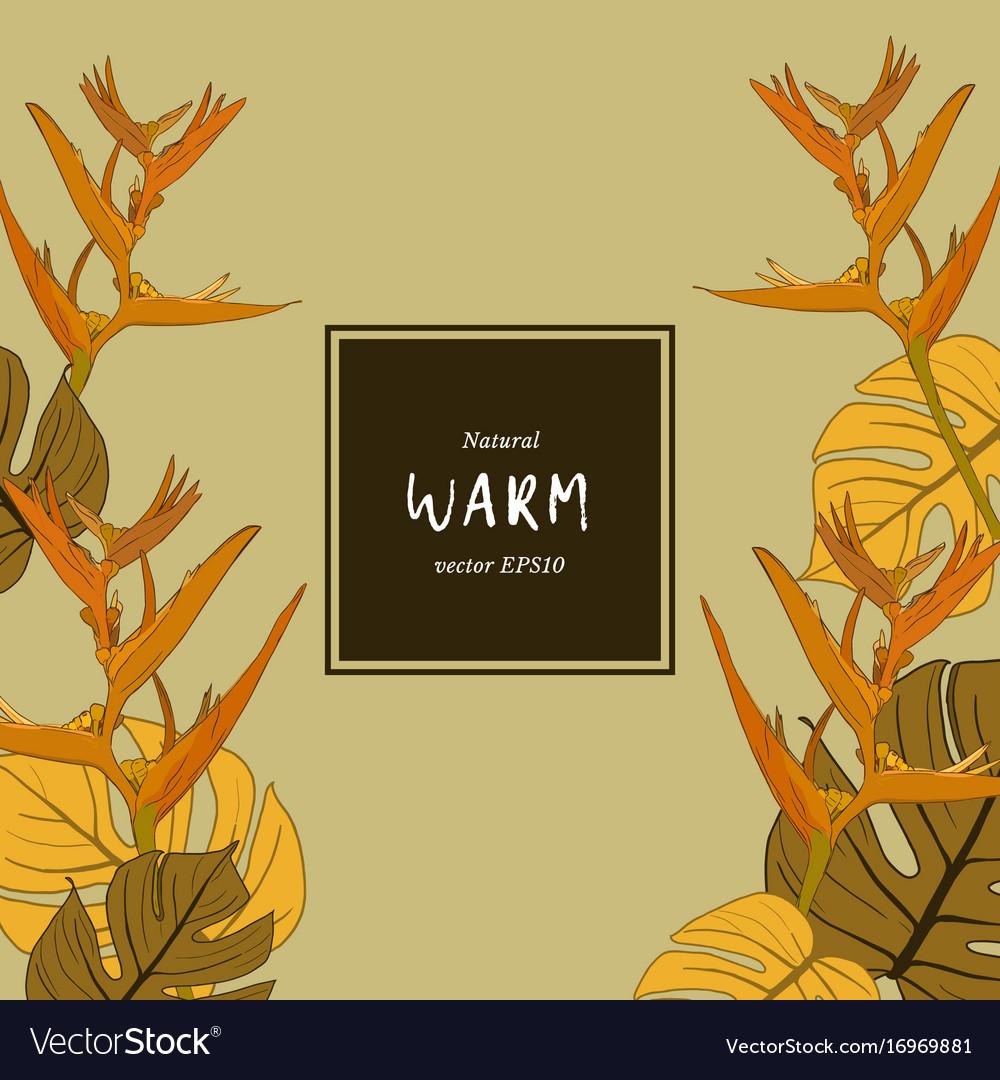 Warm natural flower -sketch vector image