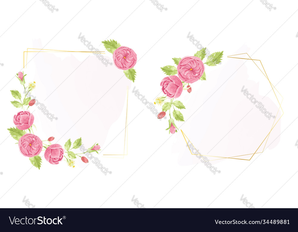 Watercolor hand draw pink english rose wreath