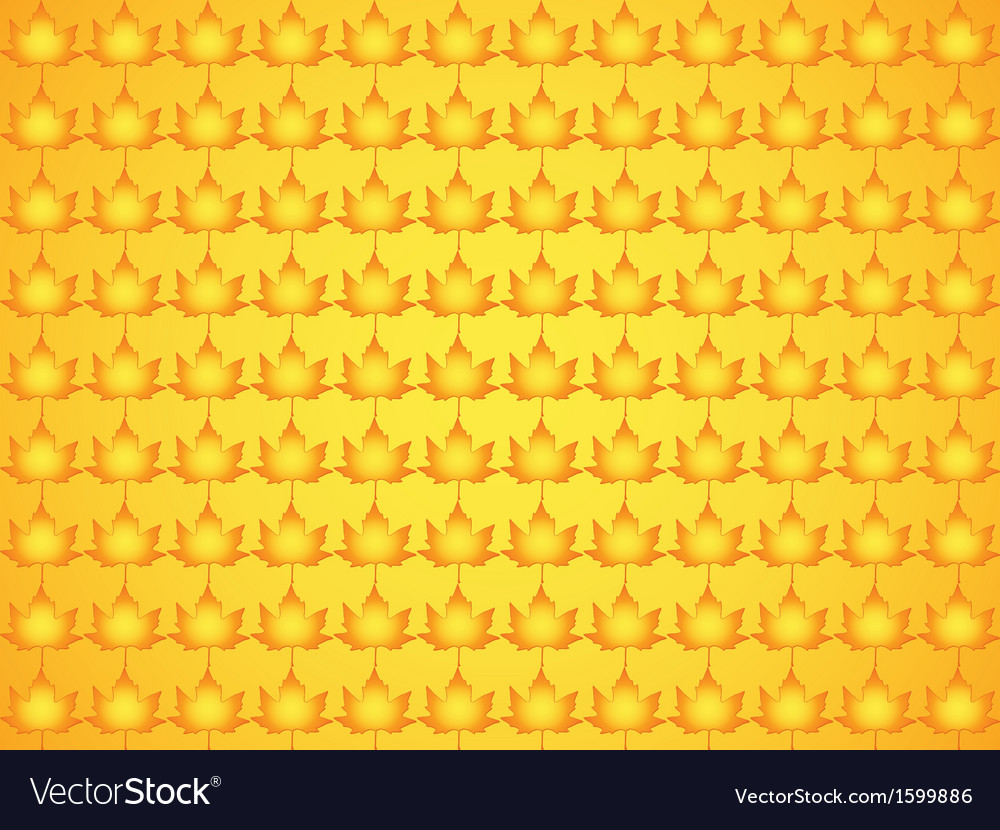 Pattern made of maple leaves vector image