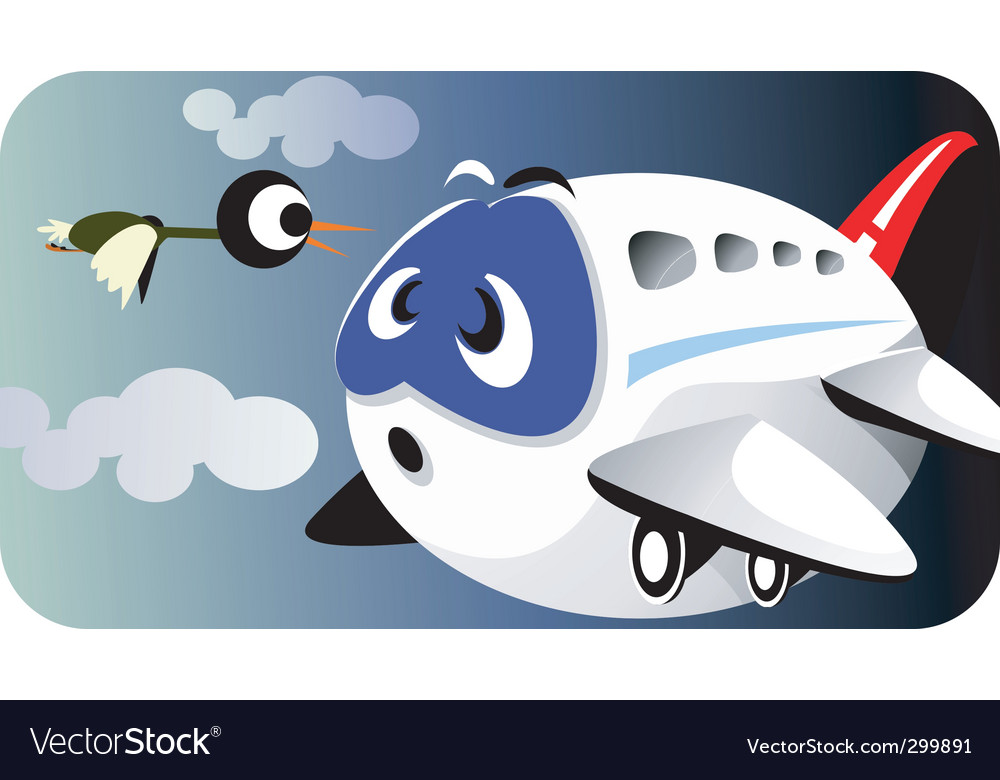 Aeroplane and bird vector image