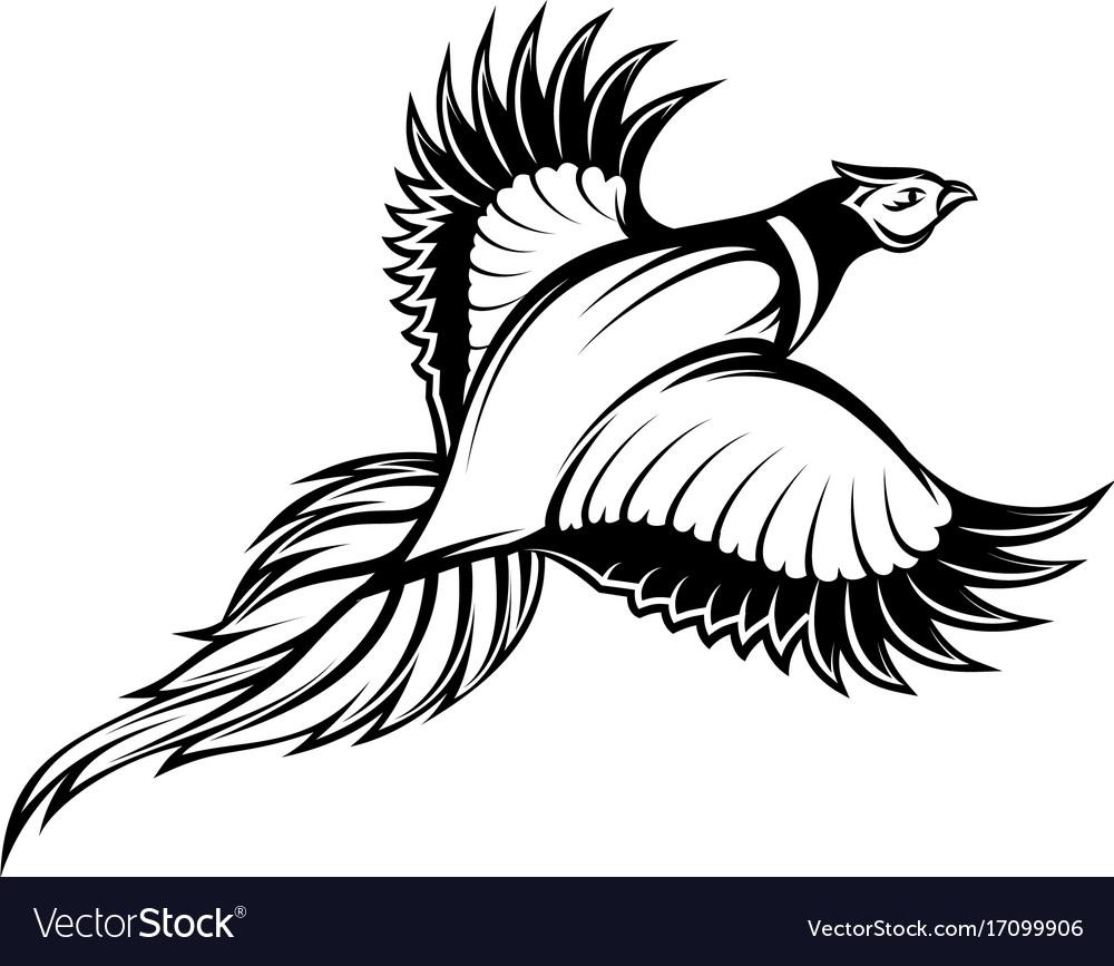A stylish monochrome flying