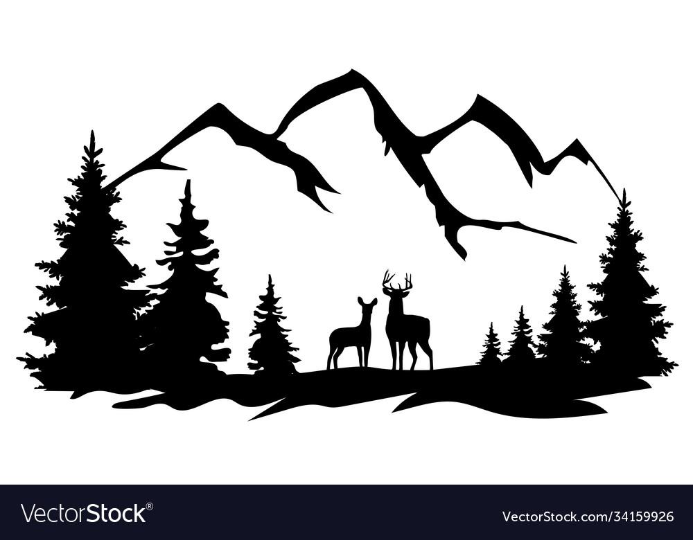 Deer in wilderness