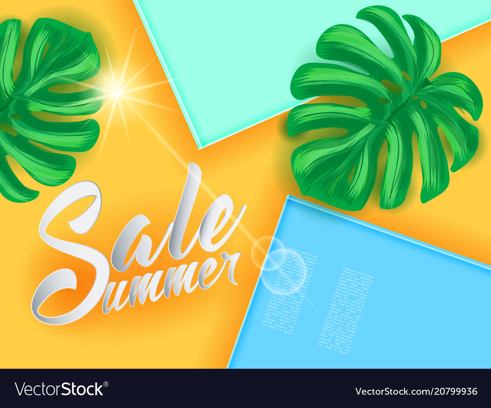 Summer sale on papper background witn palm leaves