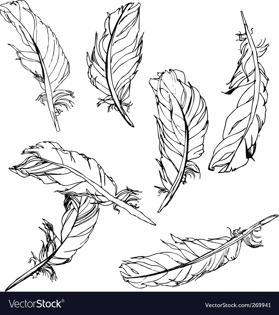 Artistic feathers