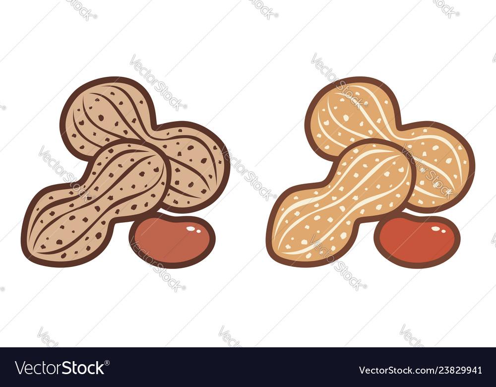 Flat icons of peanuts