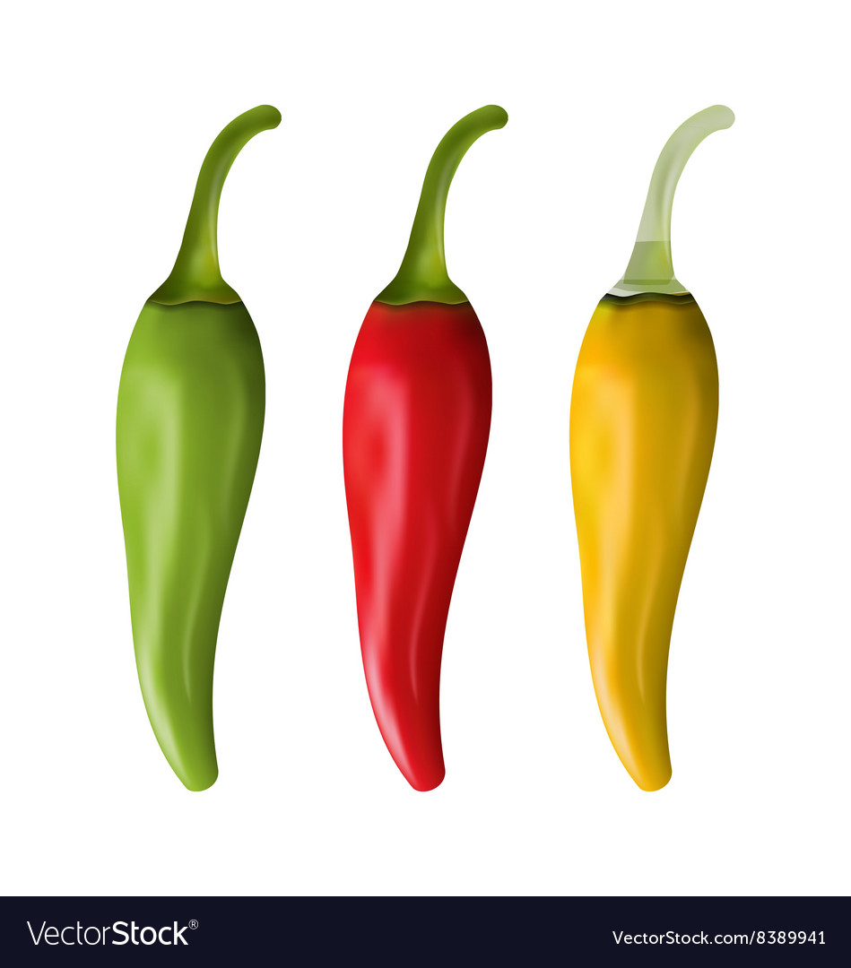 Set of Colorful Chili Peppers Isolated on White