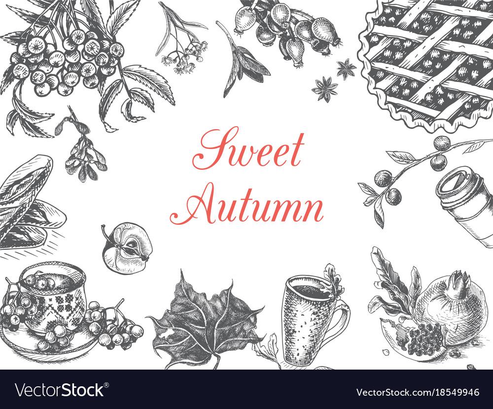 Autumn sketch - seasonal food vector image