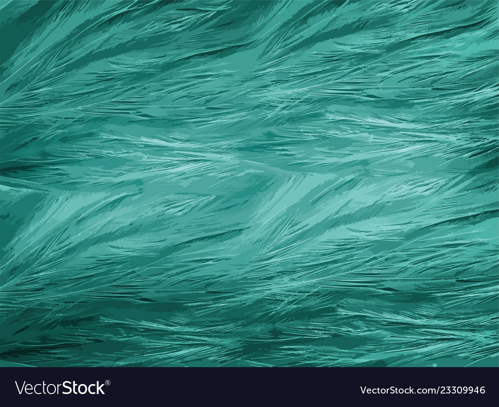 Bird fur animal background and texture good