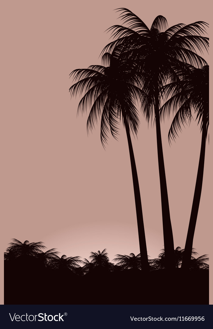 Palm trees against the sky vector image