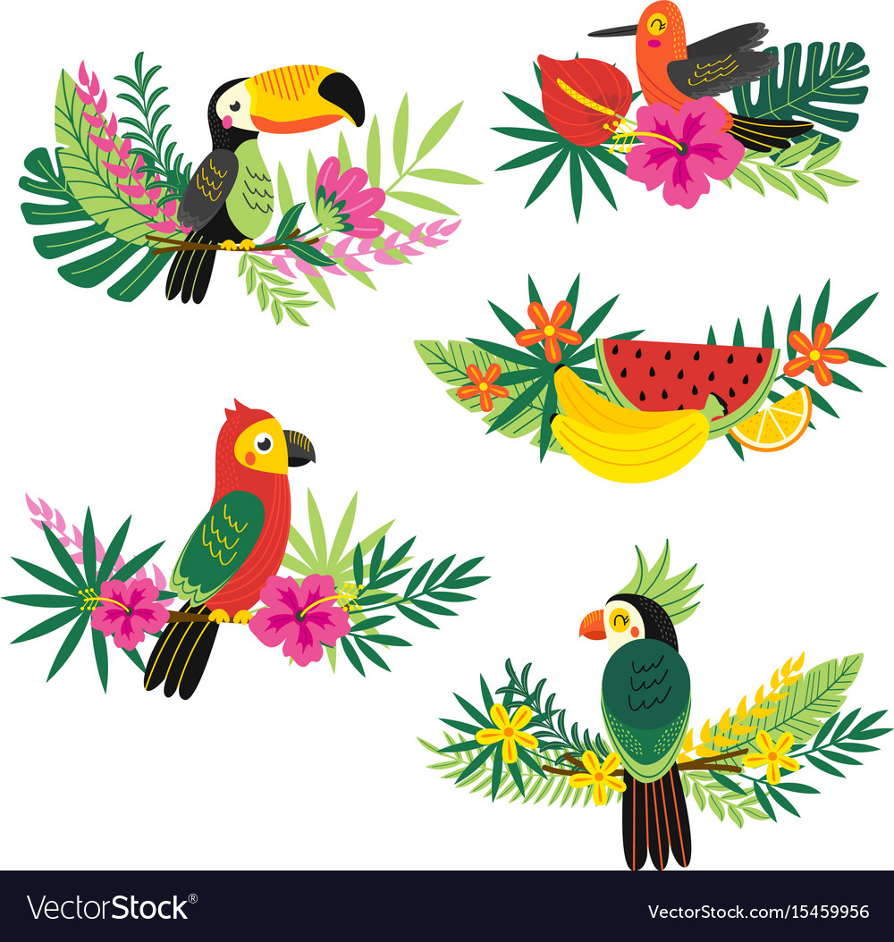 Set of isolated decorative tropical design