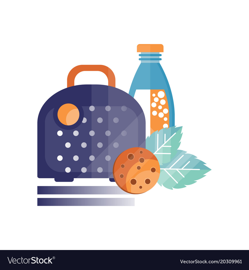 Lunch bag with coocie and bottle of juice healthy vector image