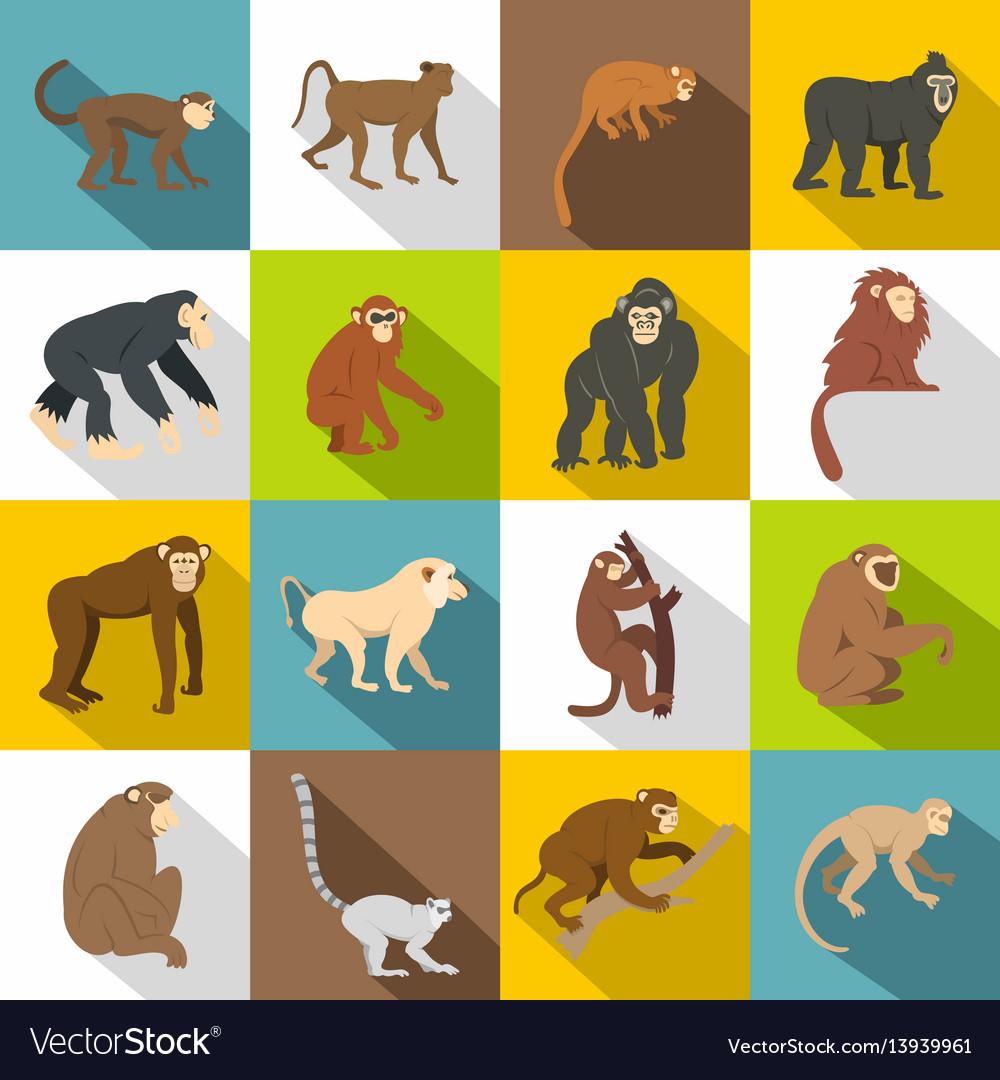 Monkey types icons set flat style