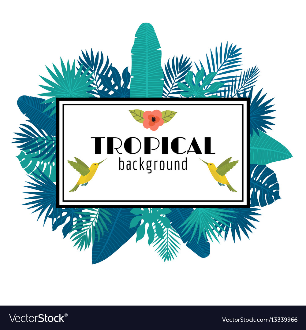 Tropical leaves background summer design square