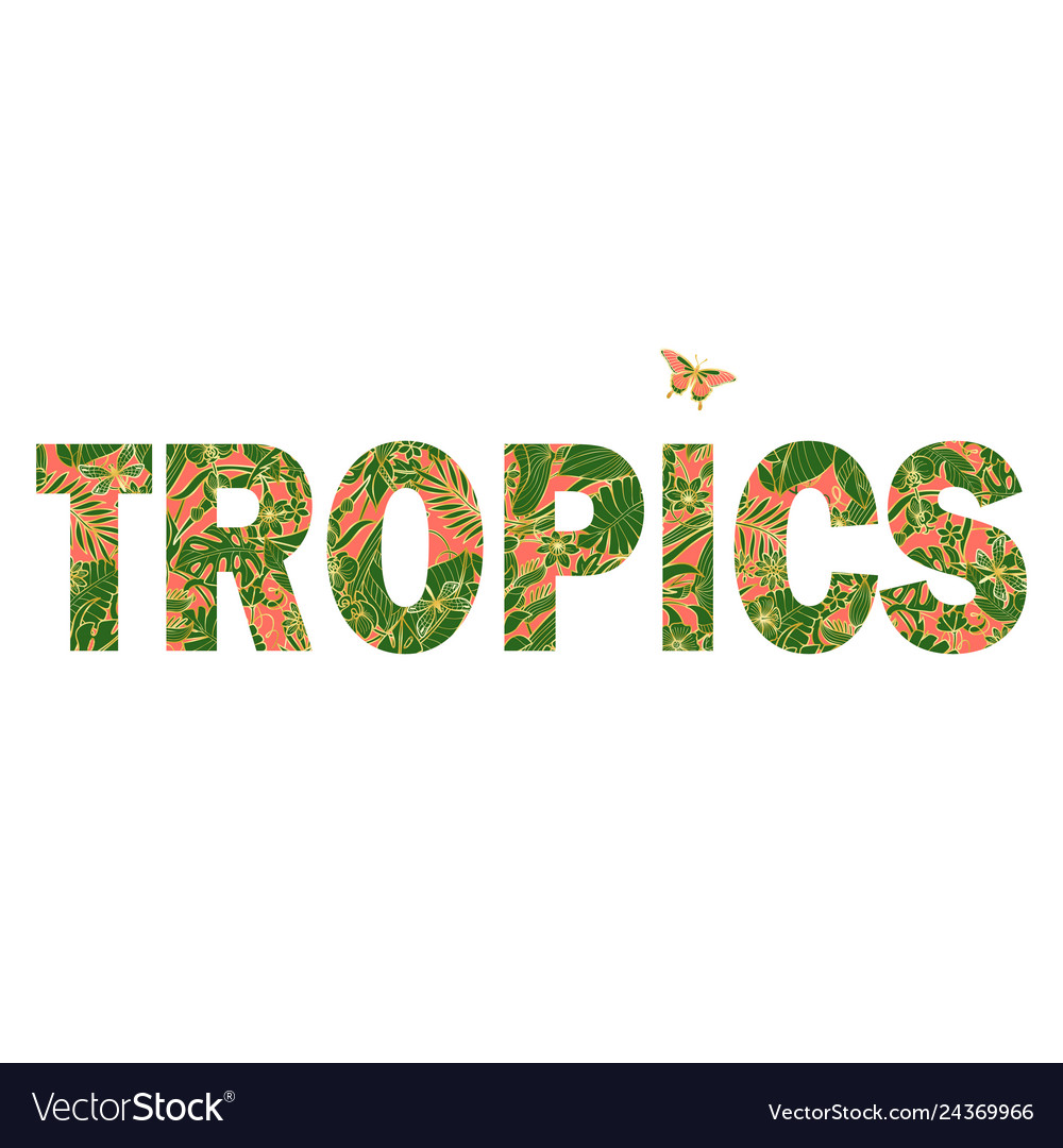 Tropics t-shirt print with exotic flowers and