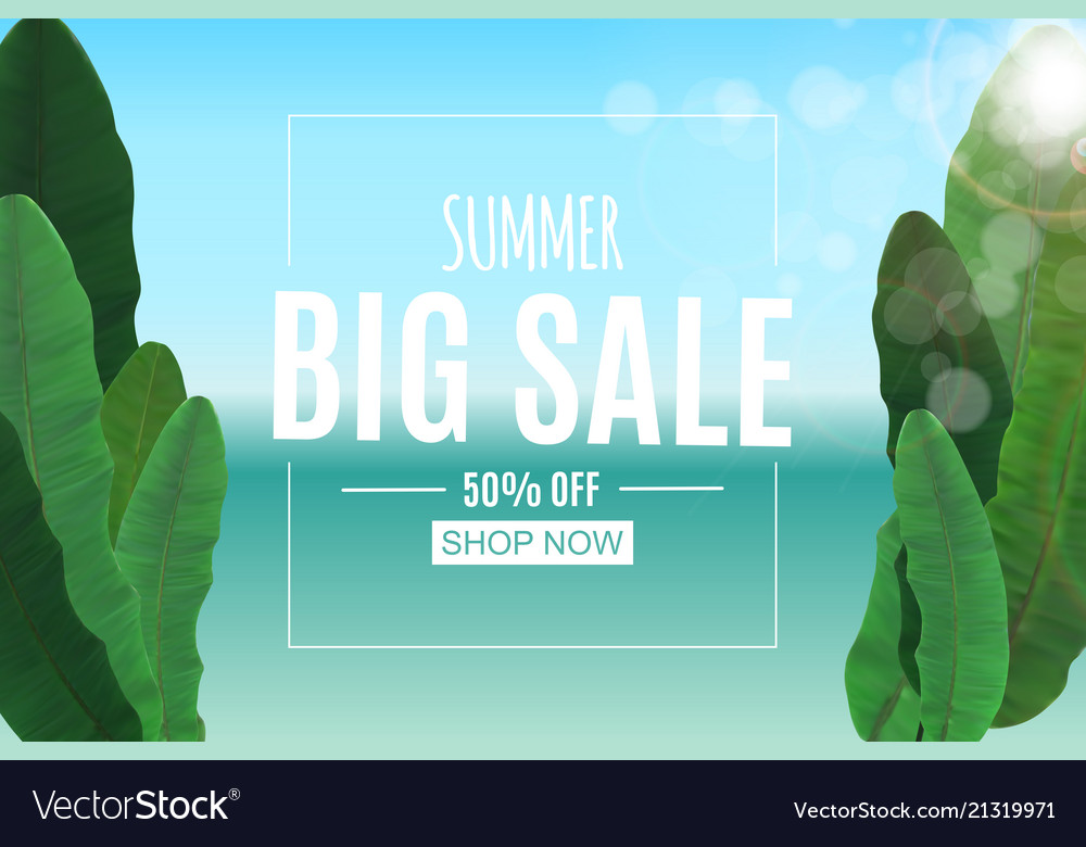 Abstract summer sale background with palm leaves