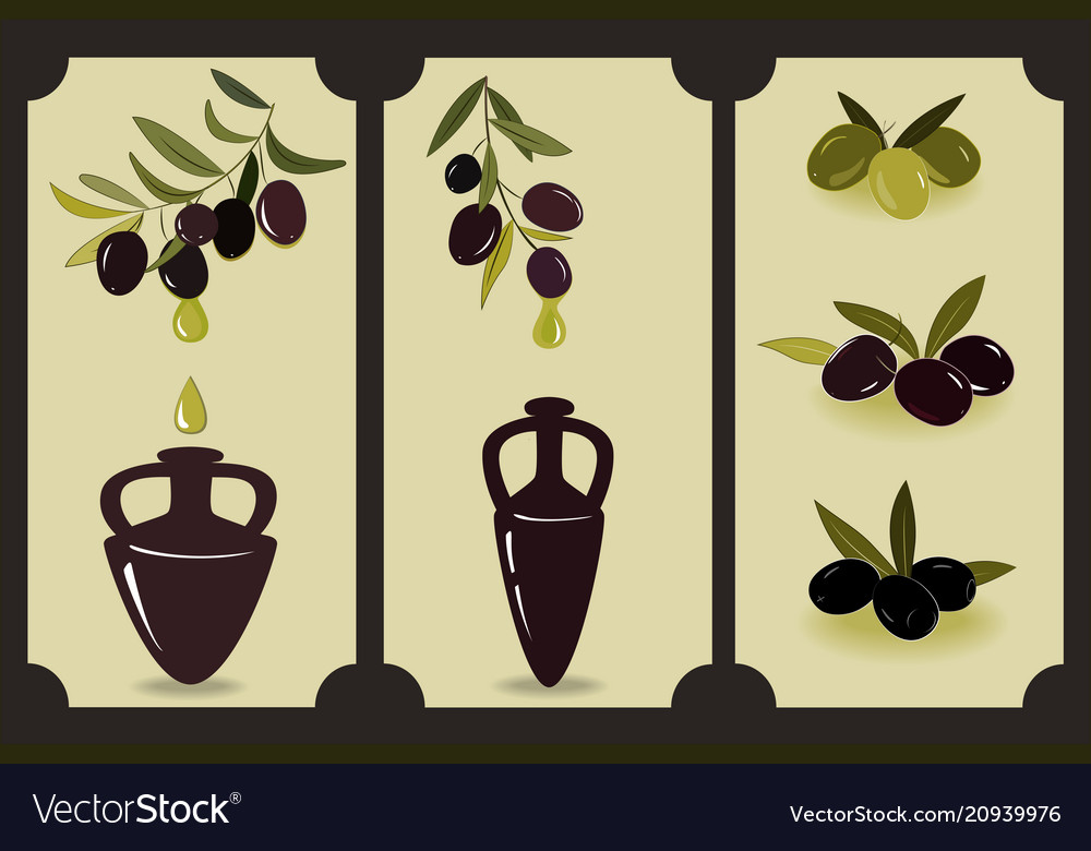 Olive oil set labels with olive branches and