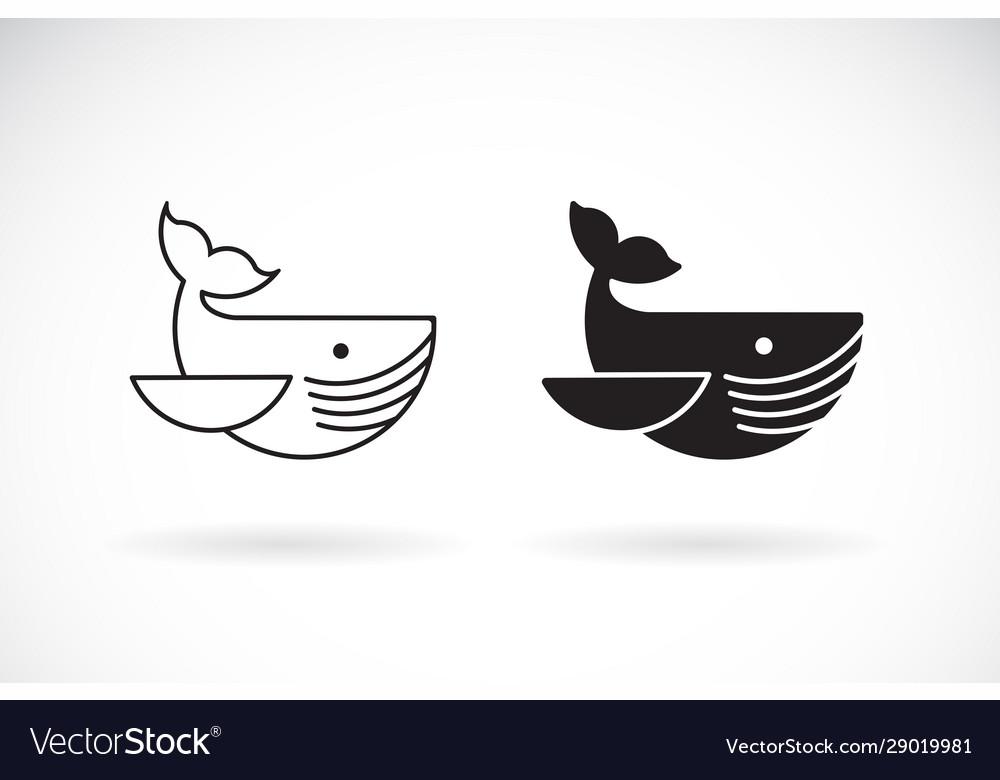 Whale design on white background undersea animals