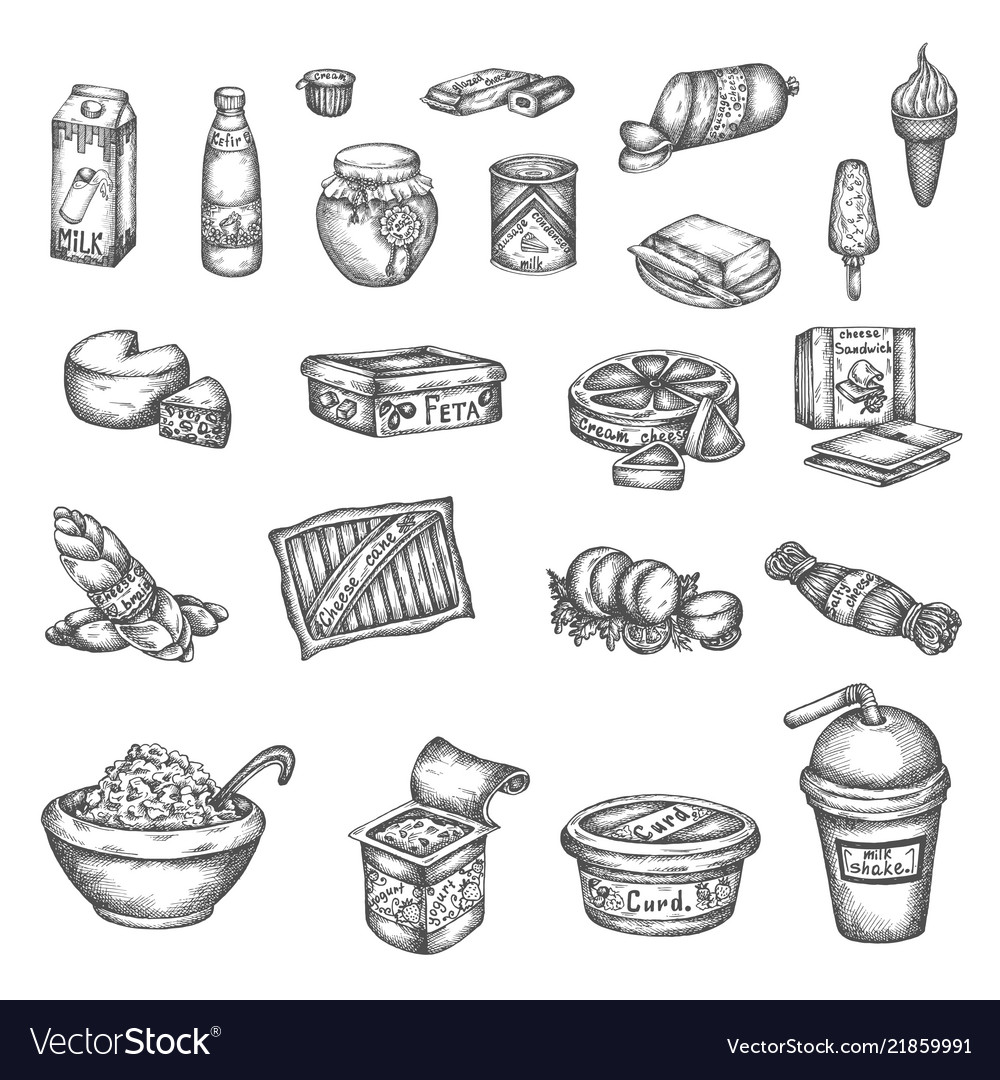 Hand drawn dairy elements milk cheese butter and