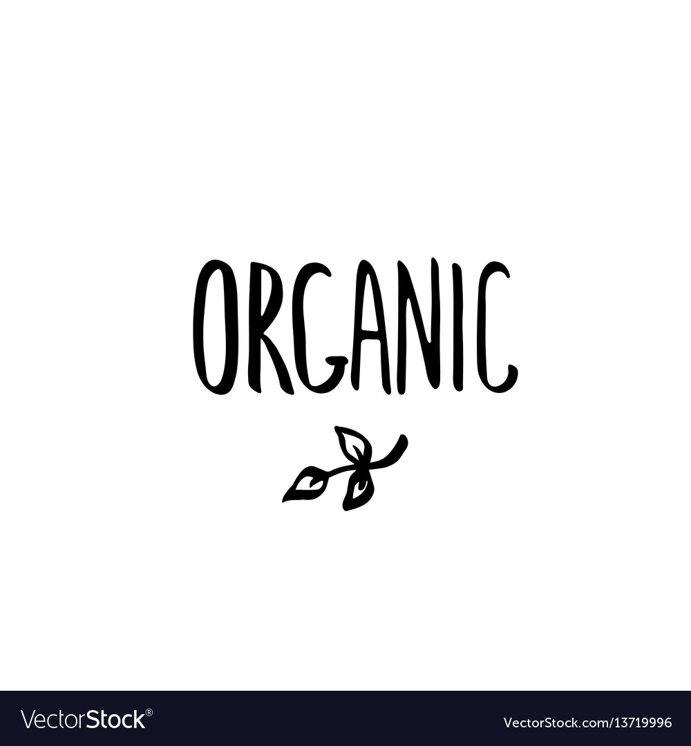 Hand drawn brush lettering organic template vector image