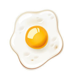 Fried egg fast food vector