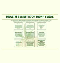 health benefits hemp seeds horizontal info vector image