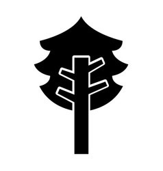 tree plant pine isolated icon vector image
