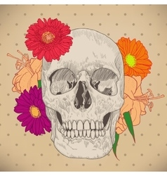 Vintage Greeting Card with Skull and Flowers on vector image