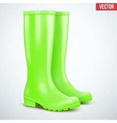 Pair of green rain boots vector